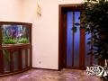"""Встроенный аквариум с живыми растениями, выполненный специалистами ООО """"Аква бутик"""""""